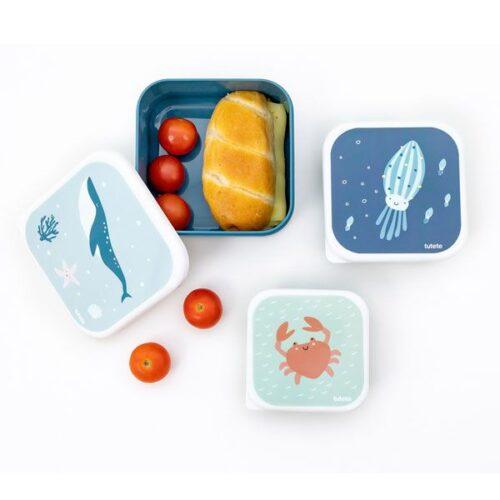 Cajas de almuerzo de oceano
